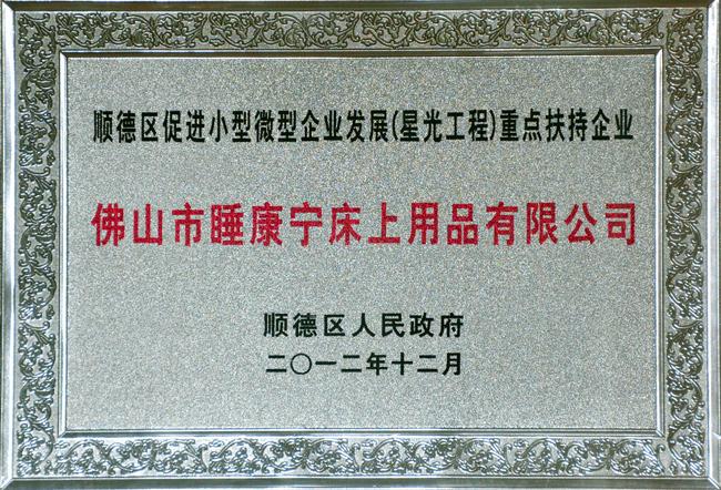 顺德星光工程重点扶持企业证书